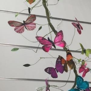 La châsse aux papillons
