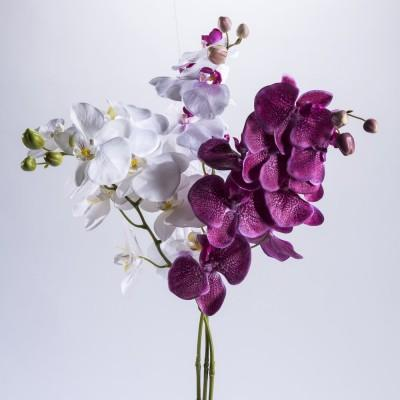 Fleurs tiges